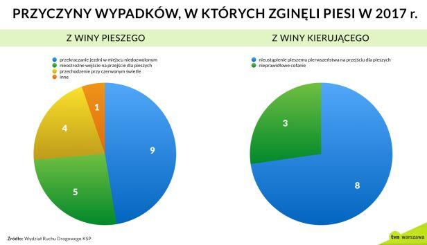Przyczyny wypadków tvnwarszawa.pl