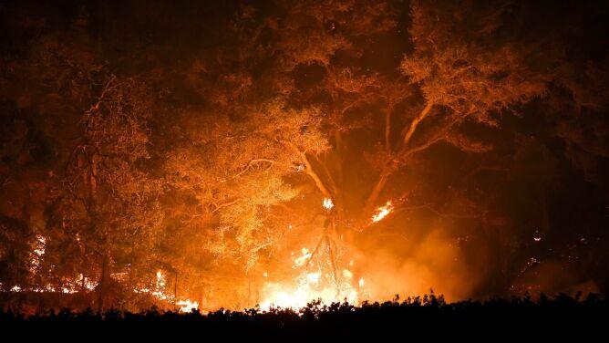 Kolejne ofiary pożarów w Kalifornii. Walka z ogniem trwa