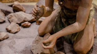 46 tysięcy lat temu na terenie Polski używano... wykałaczek