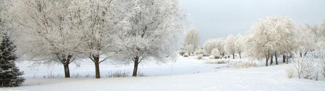 Meteorolodzy spierają się o zimę. Przygnębiające prognozy Rosjan